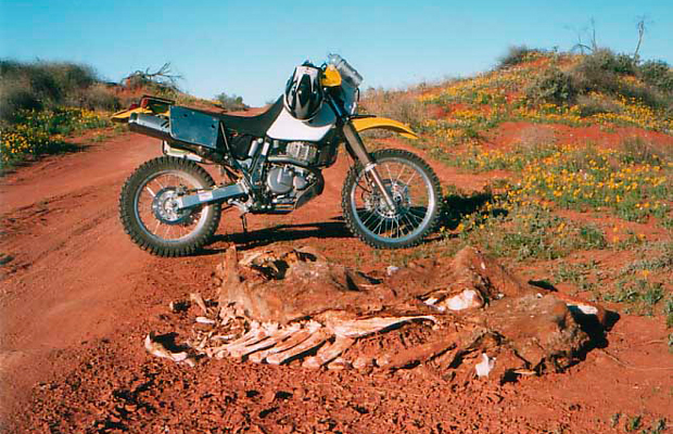slide - trapp tours guided motorcycle tours of outback australia